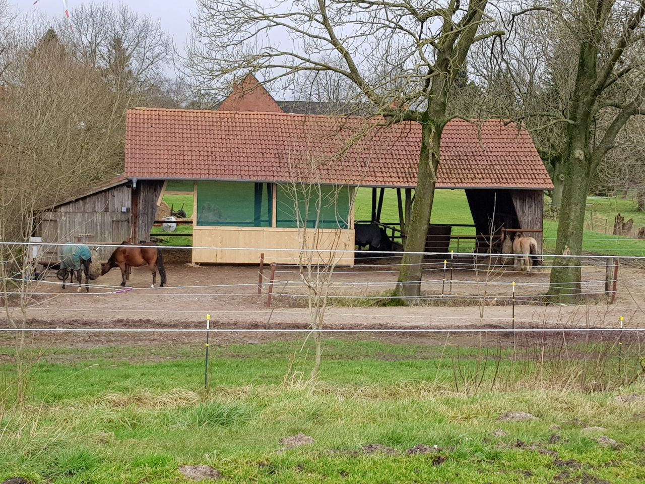 offenstall am seehauser groden wolpmanns hof die pferdepension in seehausen. Black Bedroom Furniture Sets. Home Design Ideas
